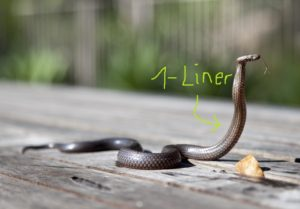 Python One-liner